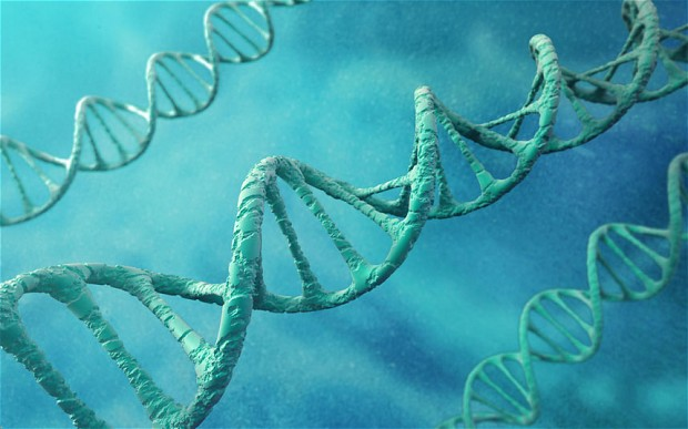 New DNA Data Storage could last Thousands of Years