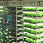 Here is the Future of Farming with Japans Future Farms