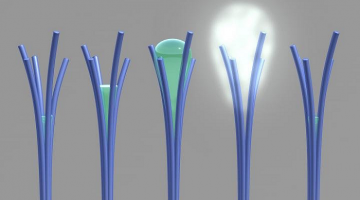 New Weird, Water-oozing material could help quench Thirst