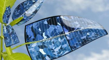Bionic Leaf Converts Sunlight and Water into Fuel