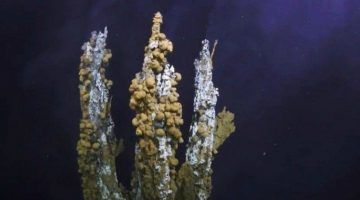 Scientists are using VR to explore a Hydrothermal vent at the bottom of the Ocean