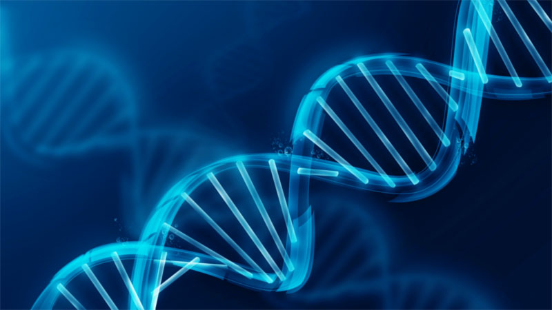 Physicists Confirm There's a Second Layer of Information Hidden in Our DNA