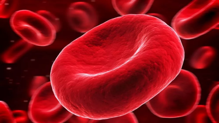 Artificial Blood for the Future?
